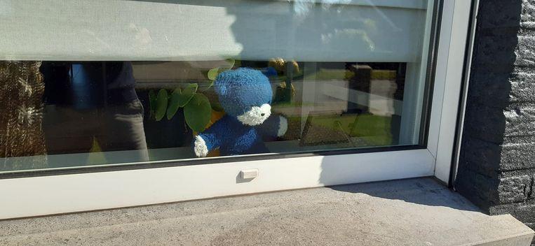 Zoek naar de teddyberen in het straatbeeld: Rozenlaan in Izegem.
