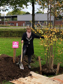 Aan de Bruinemanstraat in Druten plantte burgemeester Van Rhee-Oud Ammerveld een hartjesboom.