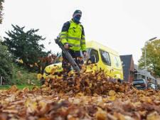 Lokale hoveniers willen na scheiding Ommen en Hardenberg openbaar groen wel voor hun rekening nemen