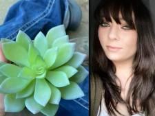 Vrouw ontdekt na twee jaar water geven dat haar vetplant van plastic is