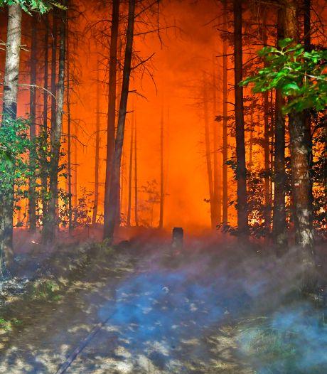 Bosbrand in buitengebied van Valkenswaard geblust, uitgebrand koolstoffilter op pad gevonden