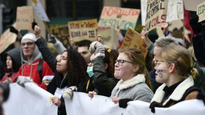 Edegem nodigt bosbrossers uit voor open debat
