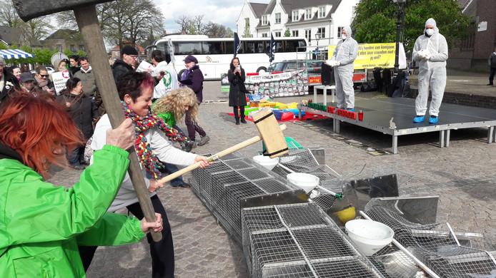 actievoerders van Konijn in Nood slaan kooien in Moergestel aam gruzelementen.