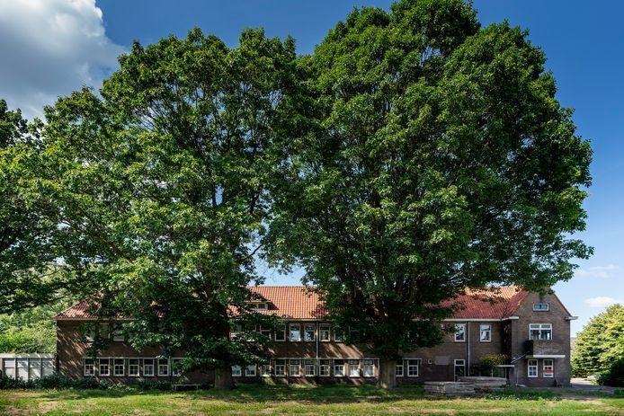 Het oude vervallen Lindelust met reusachtige bomen.