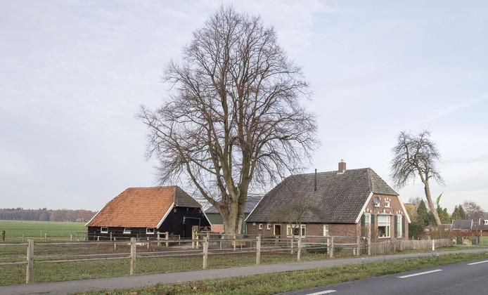 Komt  er nu een grote manege achter dit boerderijtje aan de Diepenheimseweg in Lochuizen?