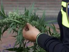 Politie treft hennepkwekerijen aan in Bergen op Zoom