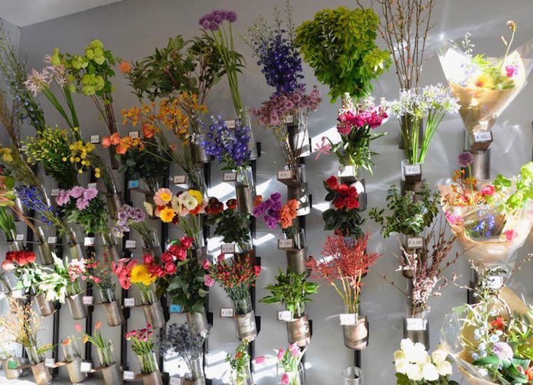 null Beeld Bloemen op Locatie