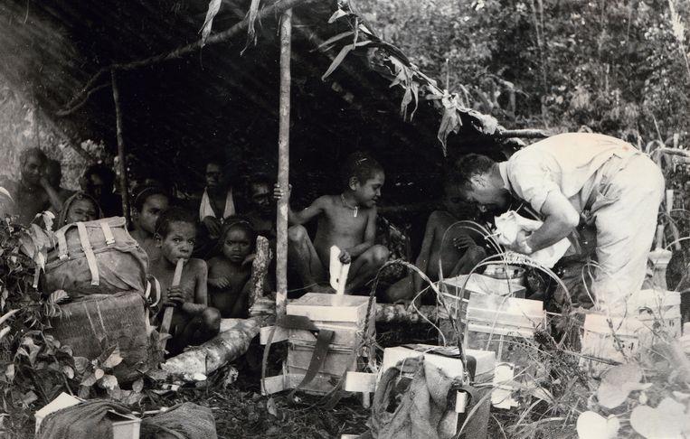 Collectie Naturalis: verzamelen, prepareren, etiketteren; tijdens een Sterrengebergte-expeditie in 1959 werd dag en nacht hard gewerkt  om zoveel mogelijk biologisch materiaal van unieke locaties in het binnenland van Nieuw-Guinea veilig te stellen.  Beeld