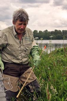 Dit knaagdier zorgt ervoor dat onze dijken zwakker worden: Vera de Boo jaagt op 'schrik van de polder'
