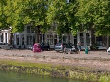 Niet alleen boos over bomenkap, maar ook beducht voor schade aan de Oude Haven