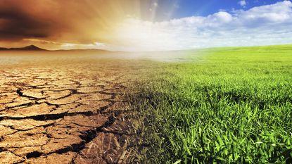 De Vlaming is somber over de klimaattop