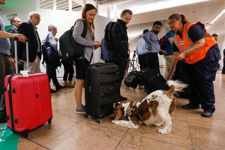 Beelden van de nieuwe douanezone in Brussels Airport vandaag.