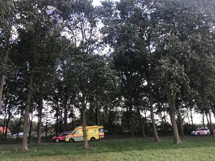 De kite kwam terecht in een boom bij strand Horst