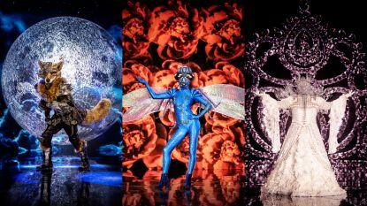 Onze reporter analyseert alle tips uit 'The Masked Singer' en komt zo misschien wel héél dicht bij de identiteit van de gemaskerde zangers