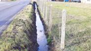 Gemeente vernieuwt grachten om wateroverlast te voorkomen