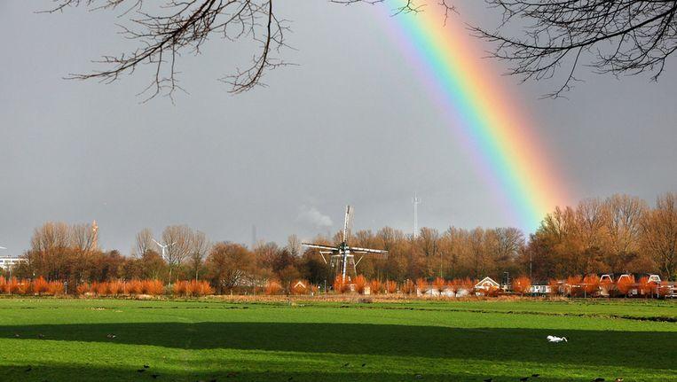 Een regenboog in Osdorp in Amsterdam. Beeld ANP
