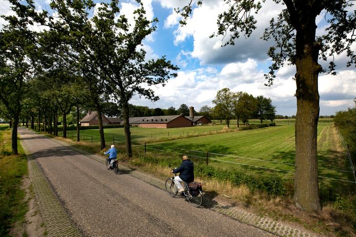 De beoogde plek voor de megastal in Spoordonk.