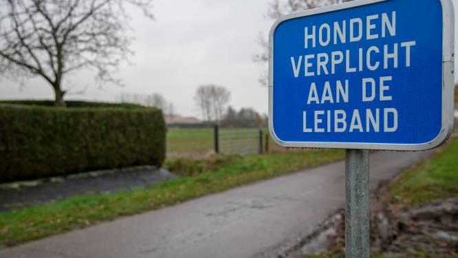 """Gemeente Hamme start nieuwe campagne op: """"Hou honden aan de leiband"""""""