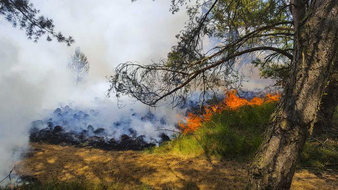 Brand bij buurtscchap Oud Reemst in nationaal park De Hoge Veluwe in 2018.