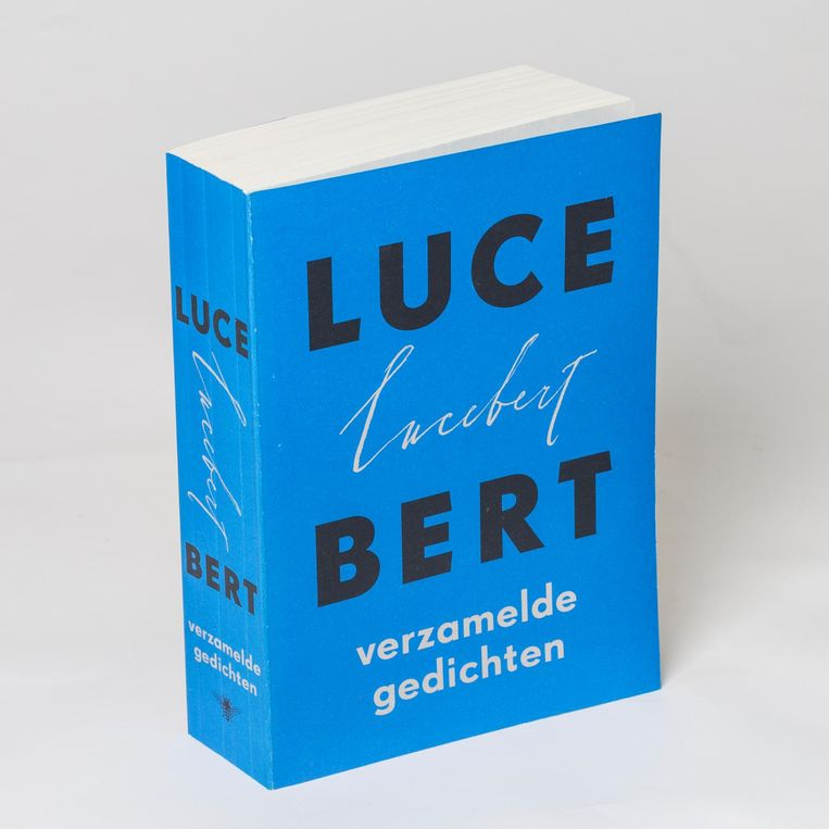 Lucebert 2004. Beeld null