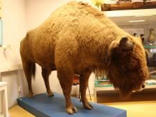 Schaljapin viert zijn honderdste verjaardag in museum Oudenbosch