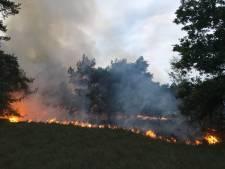 Politie heeft 'sterk vermoeden' dat natuurbrand in Vorden is aangestoken