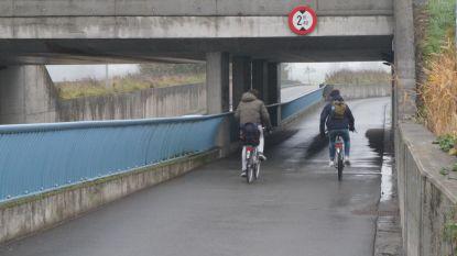 Natuurpunt en Fietsersbond willen af van auto's in tunnel onder spoorweg tussen Driesstraat en Ventweg