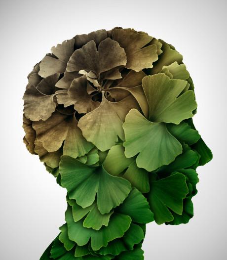 'Voorspelling toename dementie allang achterhaald'