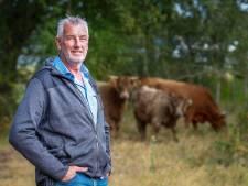 Leren tussen de runderen in Waalre