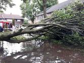 Wateroverlast Rijen loopt de spuigaten uit, bewoners willen meer haast achter maatregelen