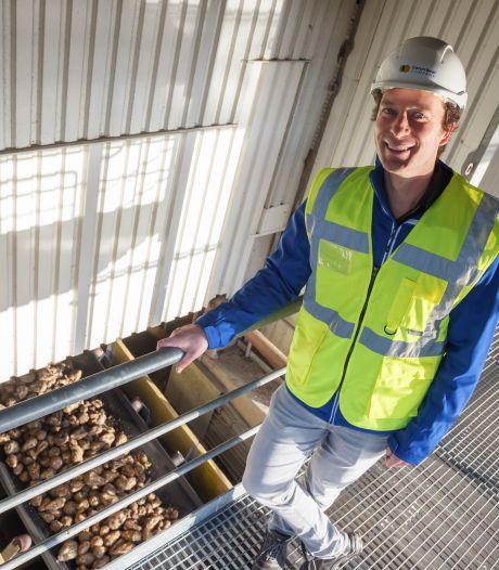 Suiker uit Dinteloord: Cosun verspilt niets meer aan de suikerbiet