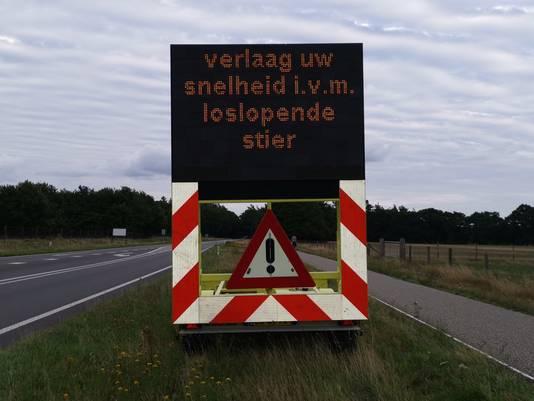 Weggebruikers op de Verlengde Arnhemseweg - N224 bij Ede worden gewaarschuwd voor de loslopende stier.