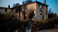 Privé-archief Griekse cineast Angelopoulos gaat in vlammen op bij bosbranden rond Athene