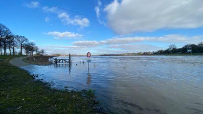 """Waterpeil van de Maas het hoogst sinds 2011: """"Maar géén abnormale dreiging"""""""