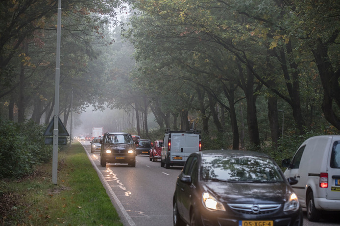 De Herselseweg in Lierop.