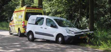 Bestelbus botst op boom in Klarenbeek