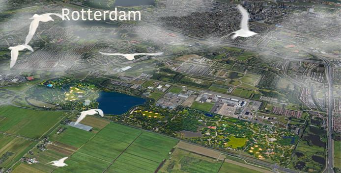 Bewoners Tegen Vliegtuigoverlast (BTV) willen de Rotterdamse luchthaven omvormen tot een park.