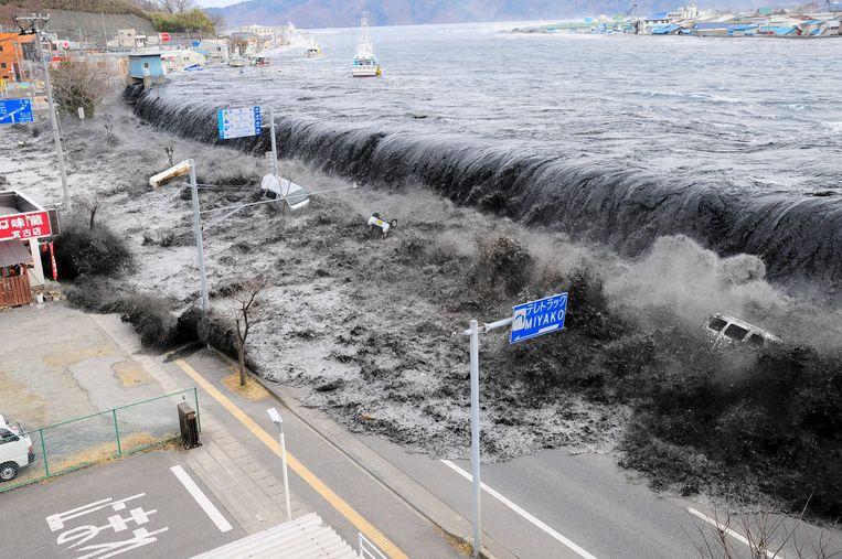 Een zware zeebeving en de daaropvolgende tsunami lieten in maart 2011 een spoor van vernieling achter langs het noordoostelijke Japanse kustgebied.