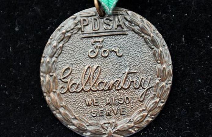 De Dickin medaille is de hoogste onderscheiding die dieren kunnen krijgen.