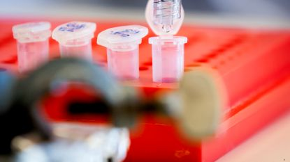 Nederland, Duitsland, Frankrijk en Italië gaan samen op vaccinjacht