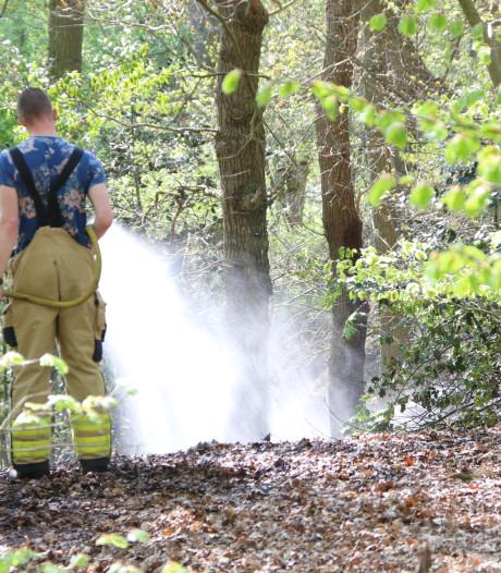 Voorbijganger stuit op brand in stuk bos in Heelsum