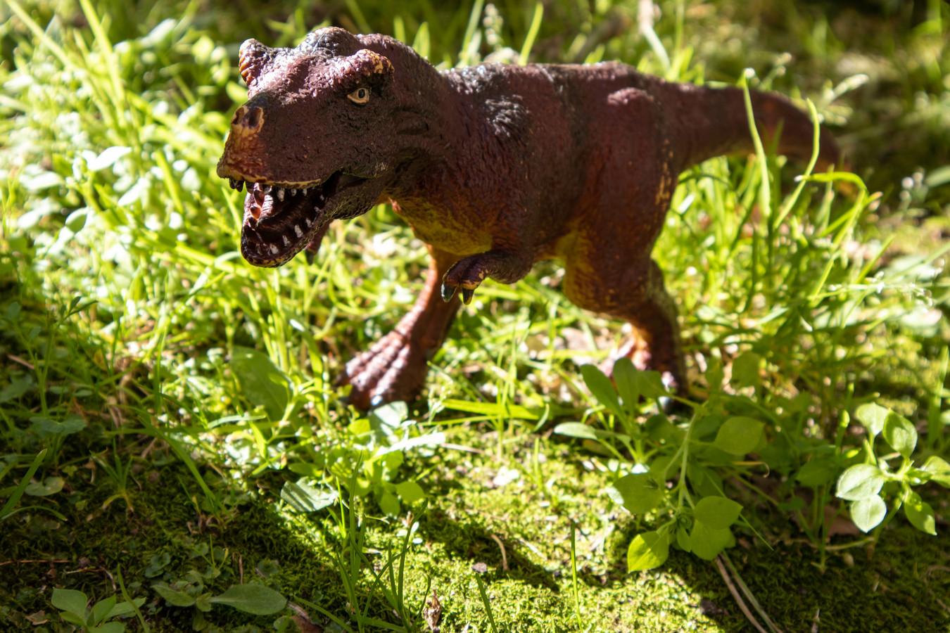 Ook leuk voor in de tuin, zo'n T-rex.