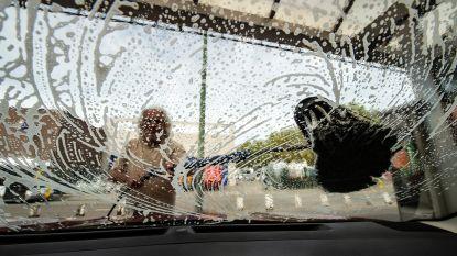 """""""Stop met stoep af te spuiten en auto wassen"""": Waterhuishoudingexpert UAntwerpen vreest watertekort door extreme droogte"""