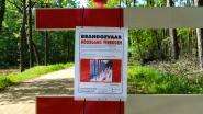 """Code oranje in Antwerpse natuurgebieden: """"Hoog brandgevaar, wees voorzichtig!"""""""