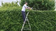 Werken in de tuin? Met deze tools gaat het zoveel gemakkelijker