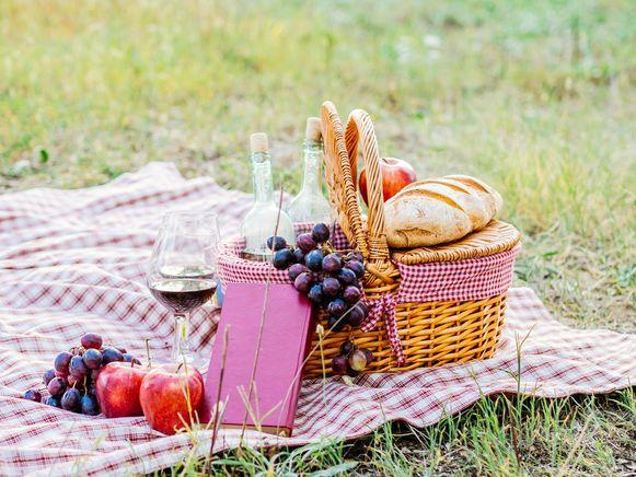 Illustratiebeeld - De jeugddienst van Kluisbergen organiseert een familiepicknick op zondag 1 september.