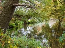 Natuurclubs over droogte: slimmer de tuin sproeien en het waterpeil omhoog