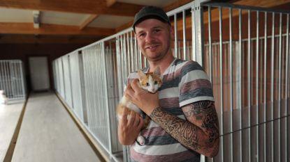 Honden en katten kunnen opnieuw geadopteerd worden uit het dierenopvangcentrum