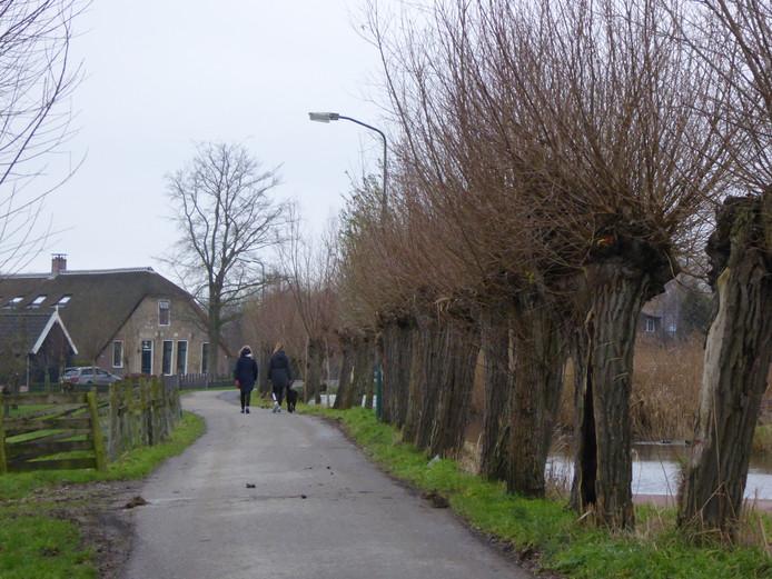 De Cabauwsekade (foto) en de Lopikerweg West in het buitengebied van Cabauw krijgen ook snel internet.