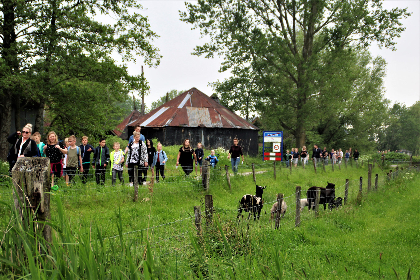 Avondvierdaagse in Hasselt voert deels door het buitengebied.